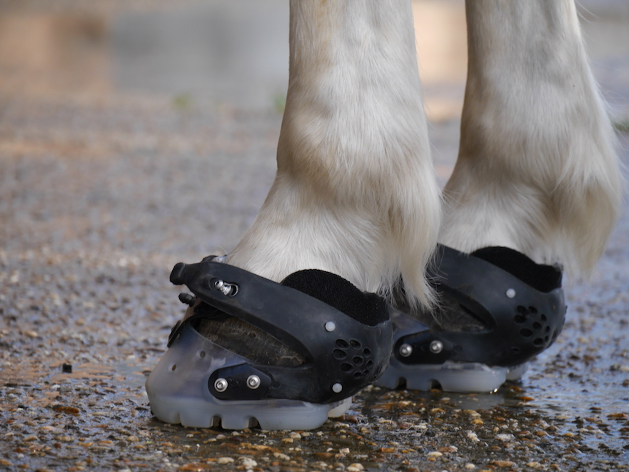 passende floating boot hoefschoenen