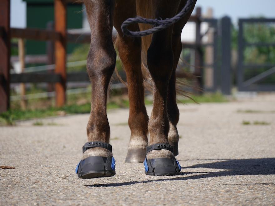 Flex hoof boots aangemeten door HoofWear