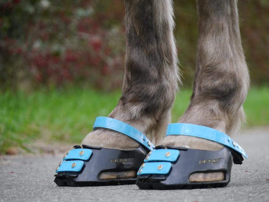 Scoot Boots aangemeten door HoofWear