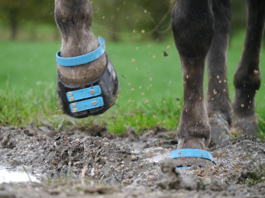Scoot Boots geschikt voor alle terreinen