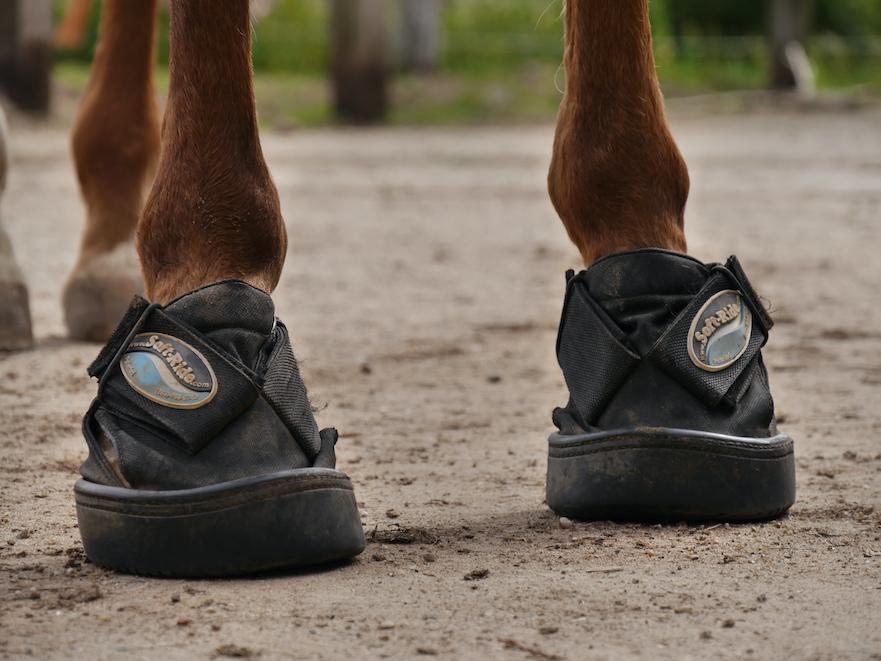 Soft Ride hoof boots therapeutische hoefschoenen bij hoefbevangenheid