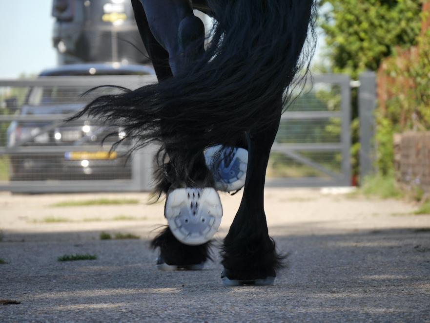 Hoefschoenen voor paardensport bij HoofWear