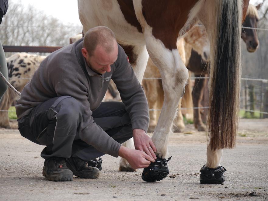 Hoefschoenen laten aanmeten door Hoefspecialist Klaas Feuth