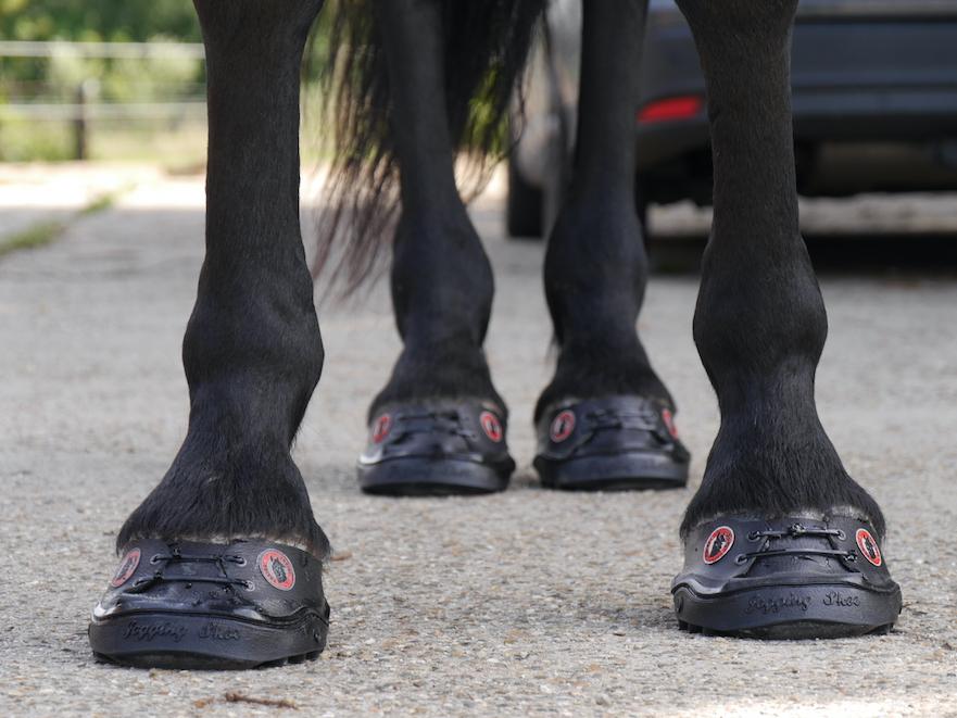 24/7 lijmschoenen voor paarden en pony's bij te korte hoeven