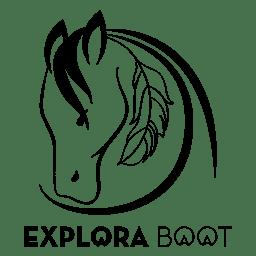 Explora logo