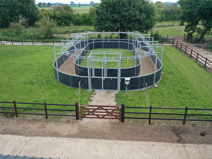 Oval horse walker Hoefrevalidatie Klaas Feuth